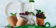 diferencia-entre-biodegradable-y-compostable